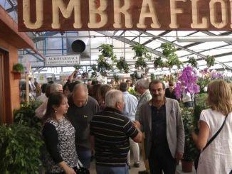 Inaugurato Umbraflor, il vivaio più grande dell'Umbria