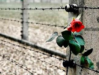 Auschwitz liberata, per non dimenticare, iniziativa a Cannara L'incontro è aperto al pubblico ed è dedicato alla celebrazione del giorno della Memoria