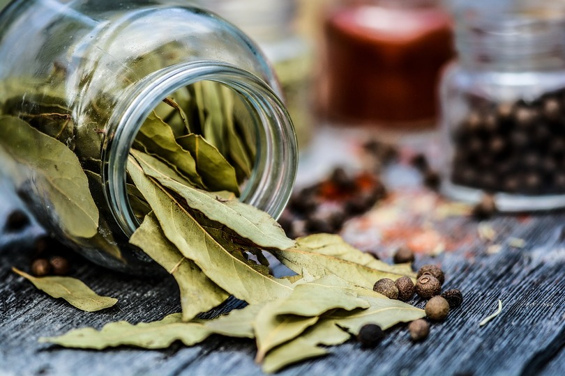 Bay Leaf Wishes Free Magic Spell