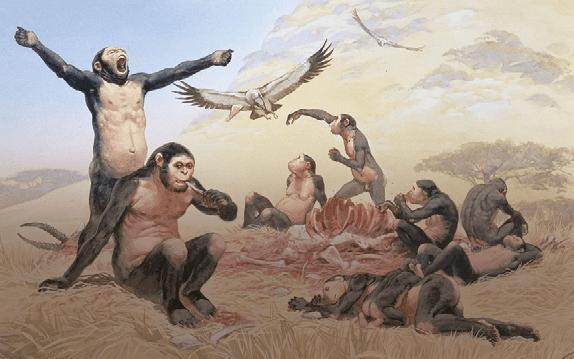 Alimentazione e Nutrizione: L'EVOLUZIONE