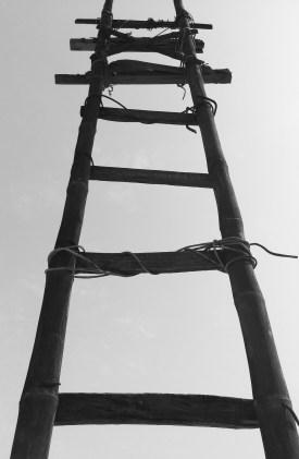 ladder
