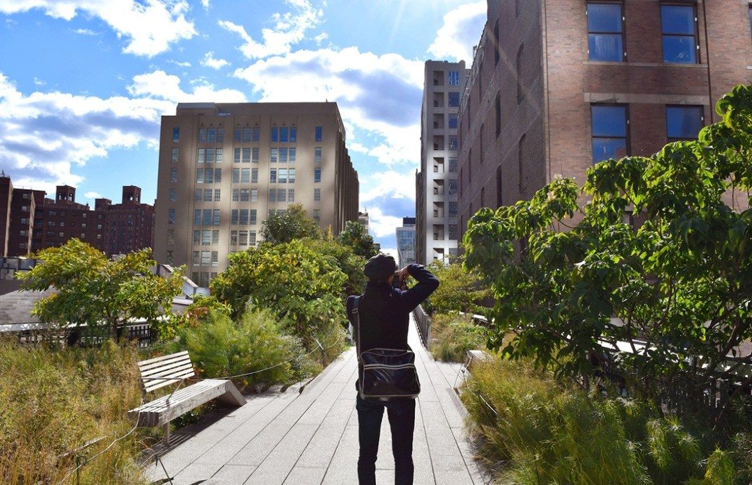 Things to do in NYC on a budget: High Line Park, New York City