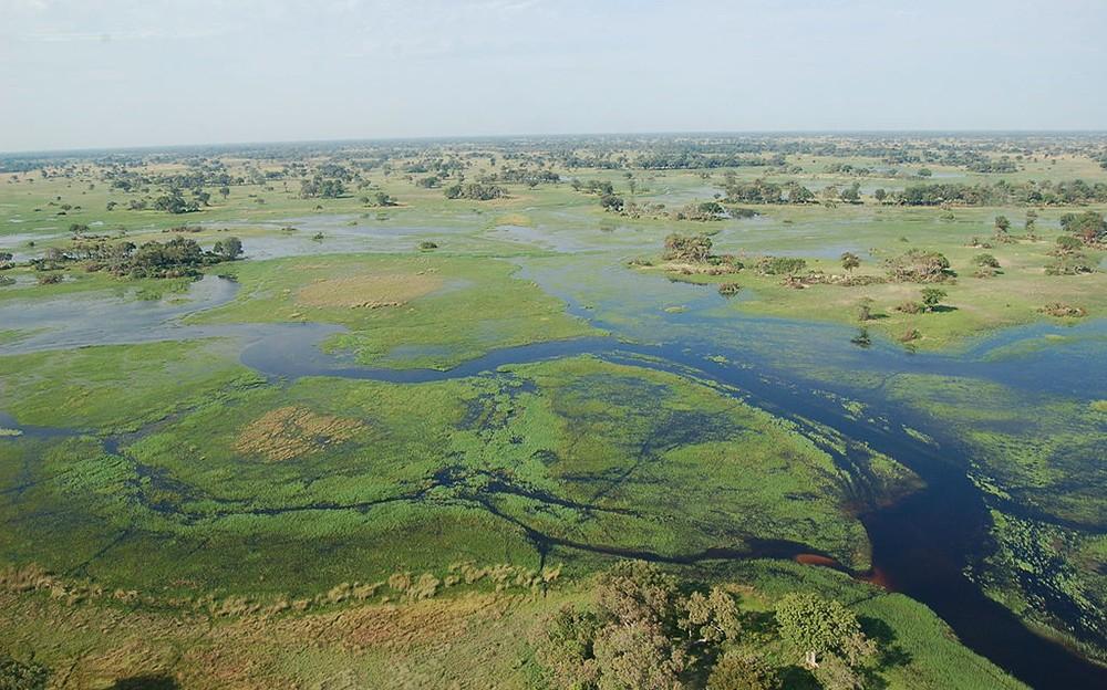 Africa's green season
