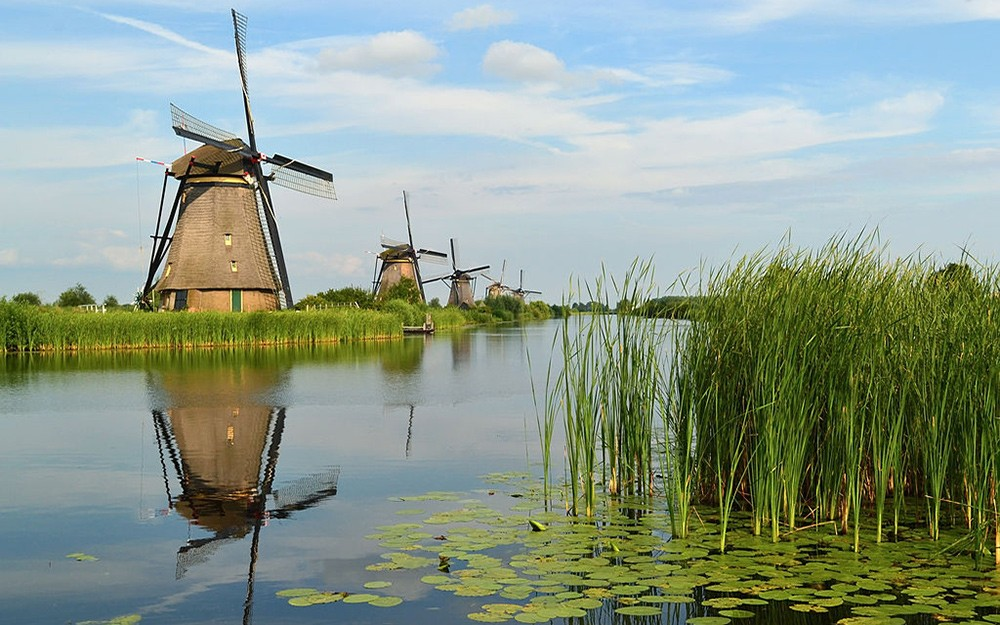 visit Kinderdijk: travel tip in the Netherlands
