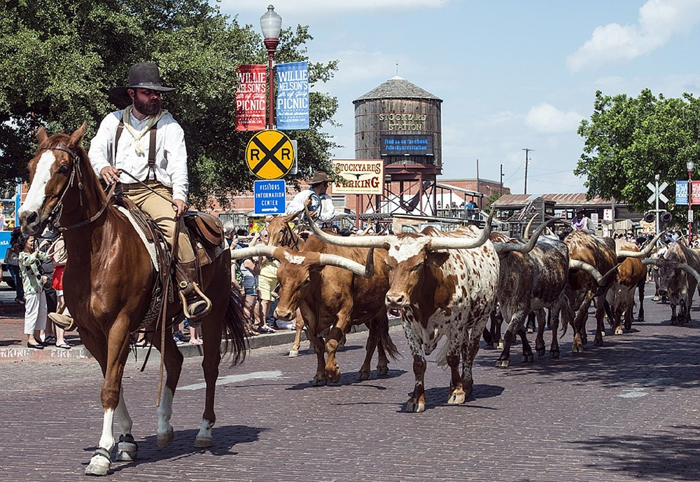 Why you should travel to Texas, USA
