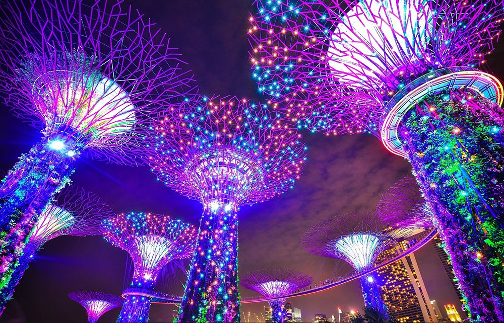 Things to see in Singapore: Singapore's Gardens by the Bay