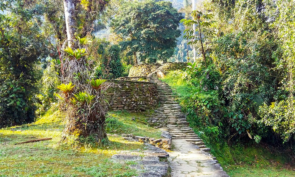 Things You Should Know Before Trekking to The Lost City in Colombia