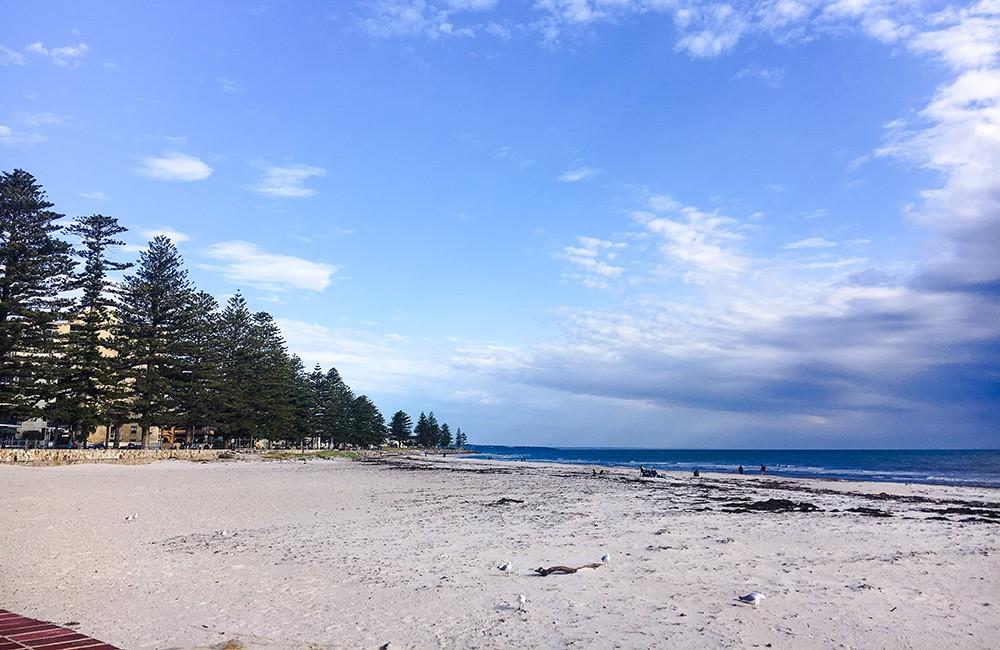 A long weekend in Adelaide - Day 2 itinerary