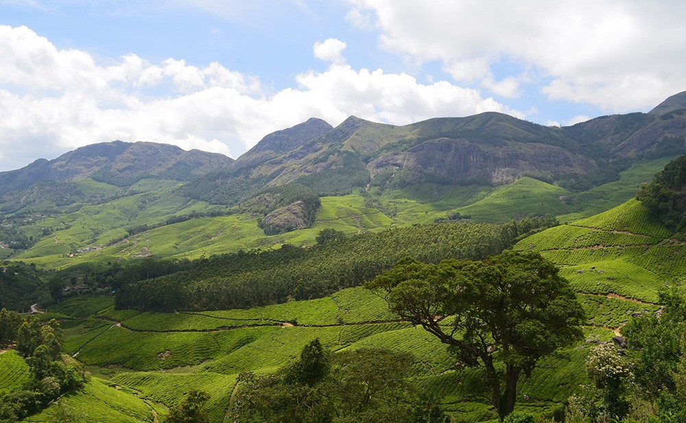 hill stations in Kerala - highlights of Kerala