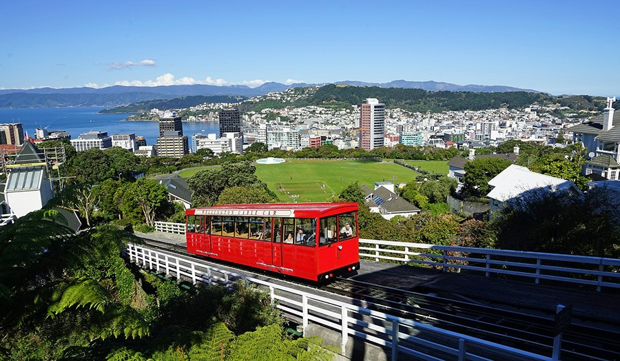 Wellington - final stop on this New Zealand North Island road trip