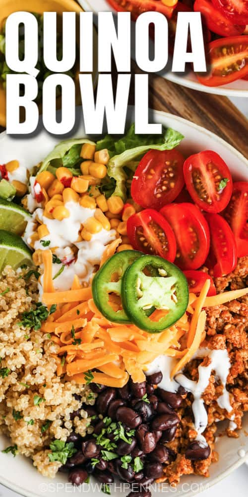 top view close up of Taco Quinoa Bowl with writing