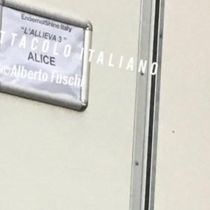 L'Allieva 3 riprese seconda settimana con Alessandra Mastronardi (senza Lino Guanciale), ciak tra Villa Borghese e Gianicolo, la terza stagione è sempre più donna
