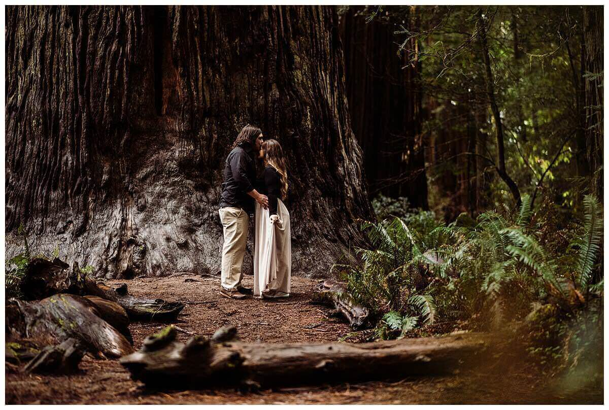 S Photography,adventure elopements,adventure engagement session,adventure session,adventure weddings,elope,elopement photographer,engagement session,intimate weddings,jedediah smith,jedediah smith redwoods state park,northern california,redwoods,stout grove,