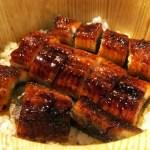 「ひつまぶし」って名古屋発祥だったの?作り方や食べ方は?
