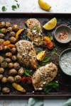 Greek Sheet Pan Chicken and Potatoes with Quick Tzatziki