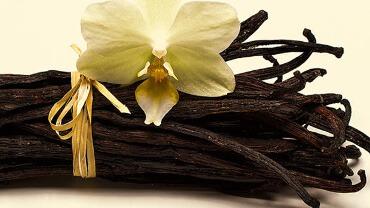 Vanille - Die Königin der Gewürze