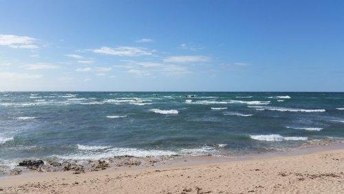 das Mildura Schiffswrack an der Küste von Exmouth