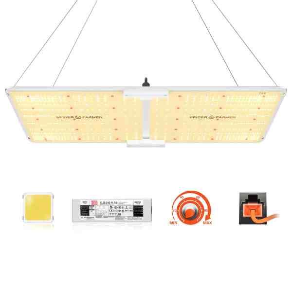 SF2000 led grow light