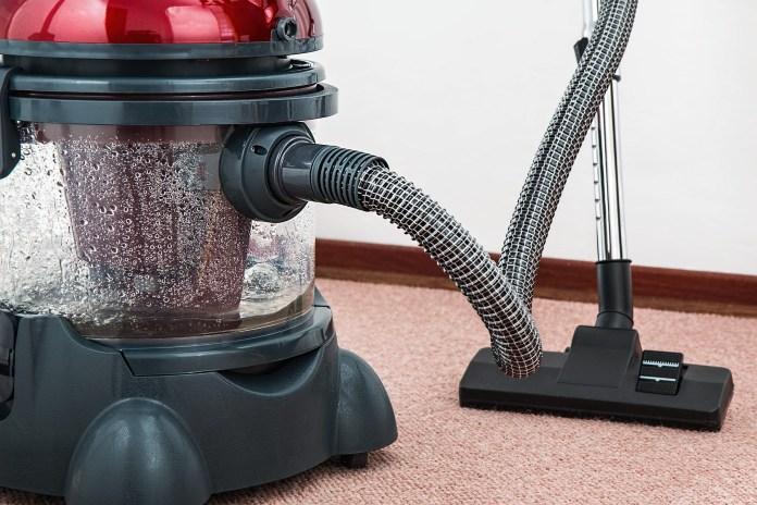 vacuum-cleaner-spider-egg