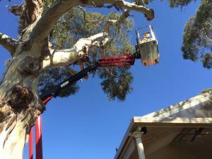 Zeus 18.93 spider boom lift.