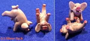 Schweine Würfel
