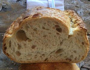 pane di grano saragolla