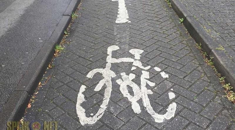 fietsen groepsverband vveme