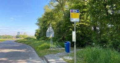 Lage Trijnweg bushalte