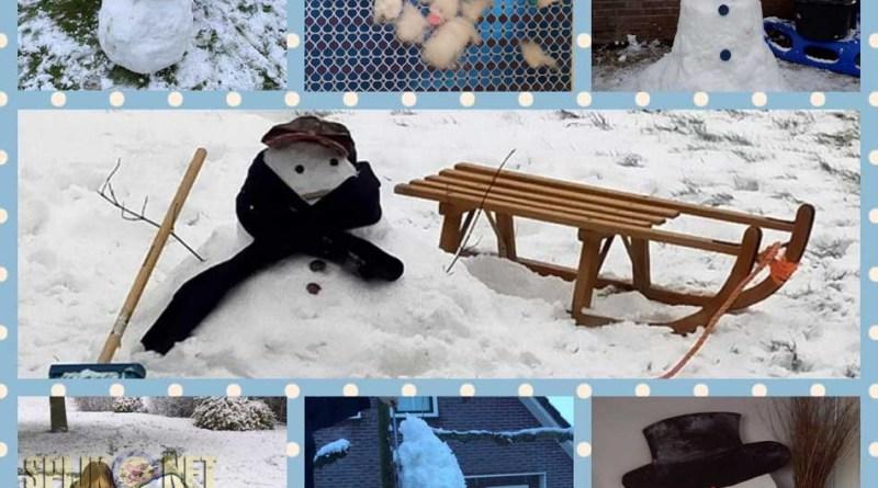 sneeuwpoppen wedstrijd vs. ijspret