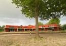Gras ingezaaid rond de school