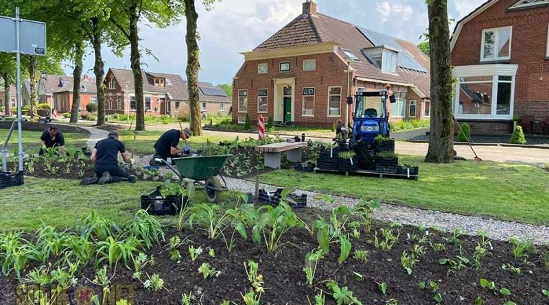 beplanting groenstrook