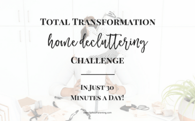 Total Transformation Home Decluttering Challenge
