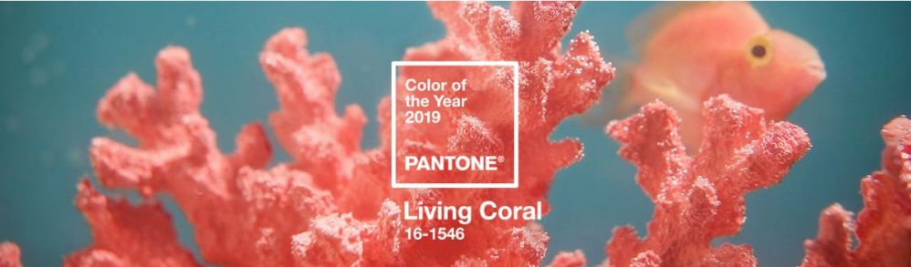 "Pantone Colour of the Year – ""Living Coral"" Makeup"