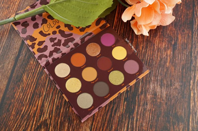 colourpop good sport palette review swatches look