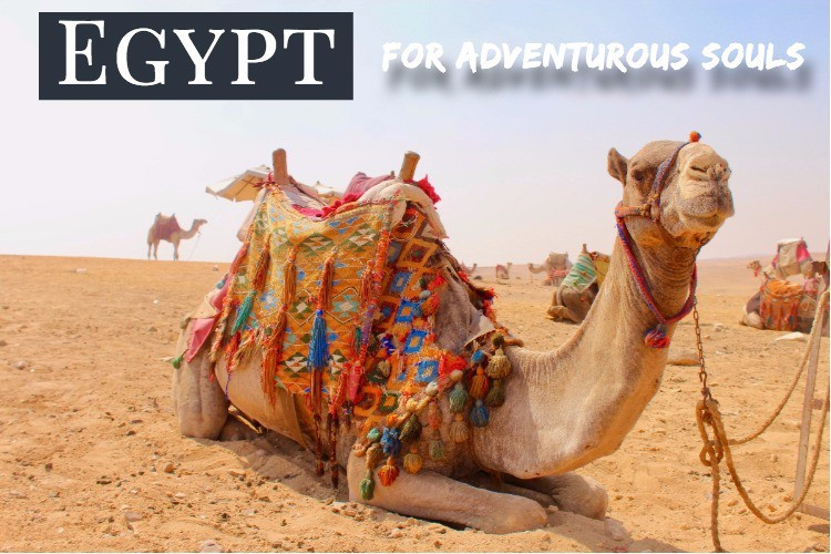 Egypt is a place with a rich history and intrigue that extends far beyond  the ancient Pyramids of Giza. I spent two days and nights exploring Cairo  with my ...