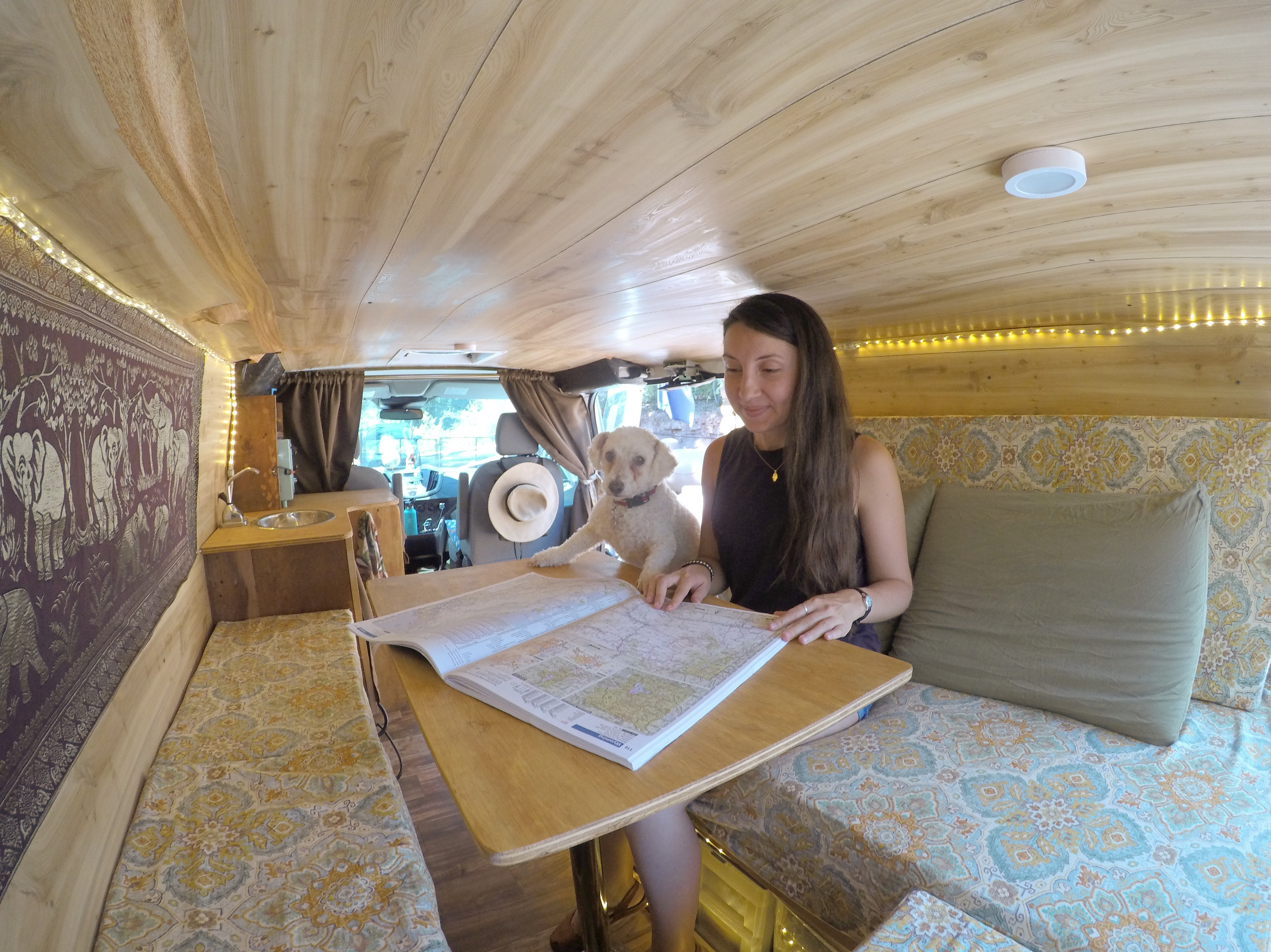 girl and dog in a van