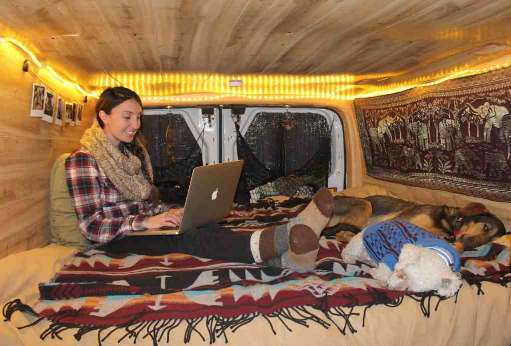 Girl in Van Working on laptop  with Dogs