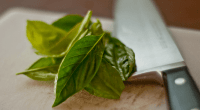 Basil and knife, photo by Mark Bonica