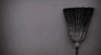 Broom, photo by Daniel Horacio Agostini