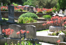 Cemetery in spring, photo by chuck b.
