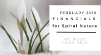 Financials for Spiral Nature February 2018