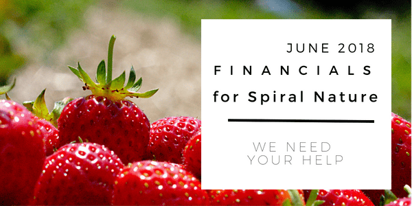 Financials for Spiral Nature June 2018