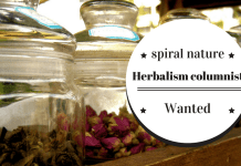 Herbalism columnist wanted