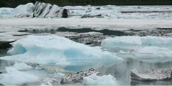 Ice, photo by Cindy Zackowitz