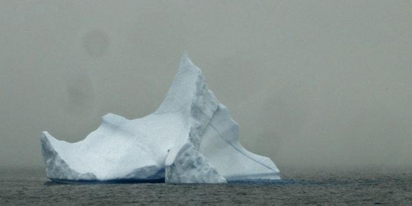 Iceberg, photo by Sonny Cohen