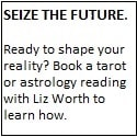 Liz Worth - Seize the Future