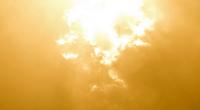 Sunshine, photo by Mark Jensen