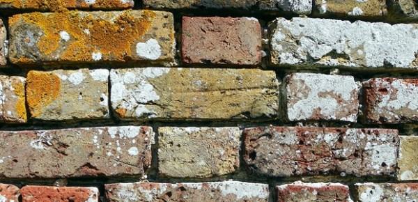 Brick wall, photo by Peter
