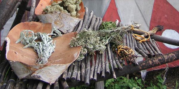 A Cree Healer and His Medicine Bundle, by David Young, et al.