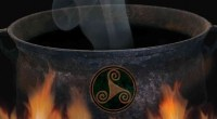 A Druid's Handbook to the Spiritual Power of Plants, by Jon G Hughes